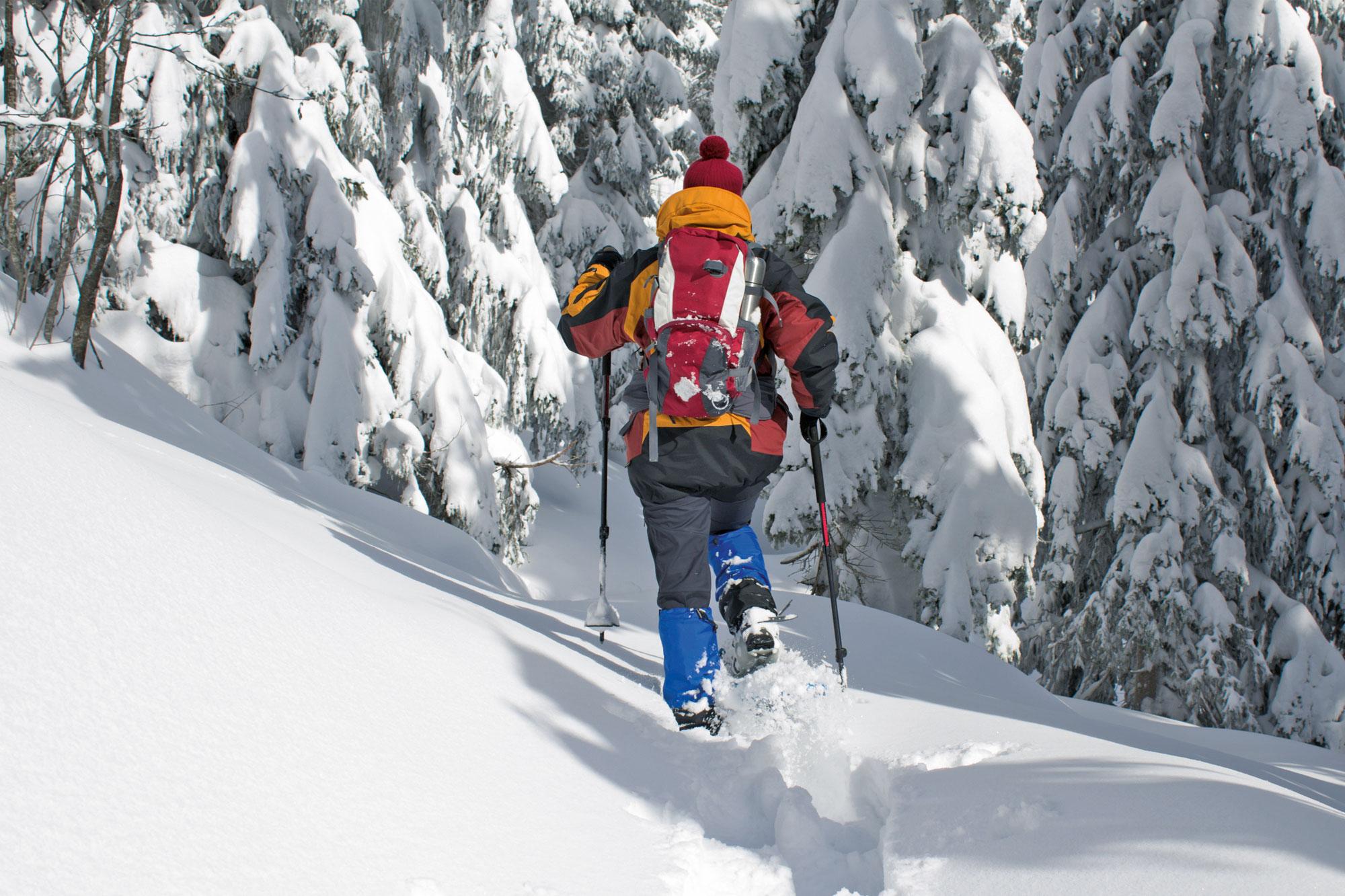 Mann im Wald beim Schneeschuhwandern