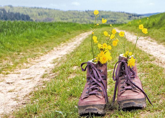 Wanderschuhe auf einem Wanderweg mit Blick auf die Berge im Schwarzwald