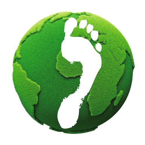grüne Weltkugel mit Fußabdruck