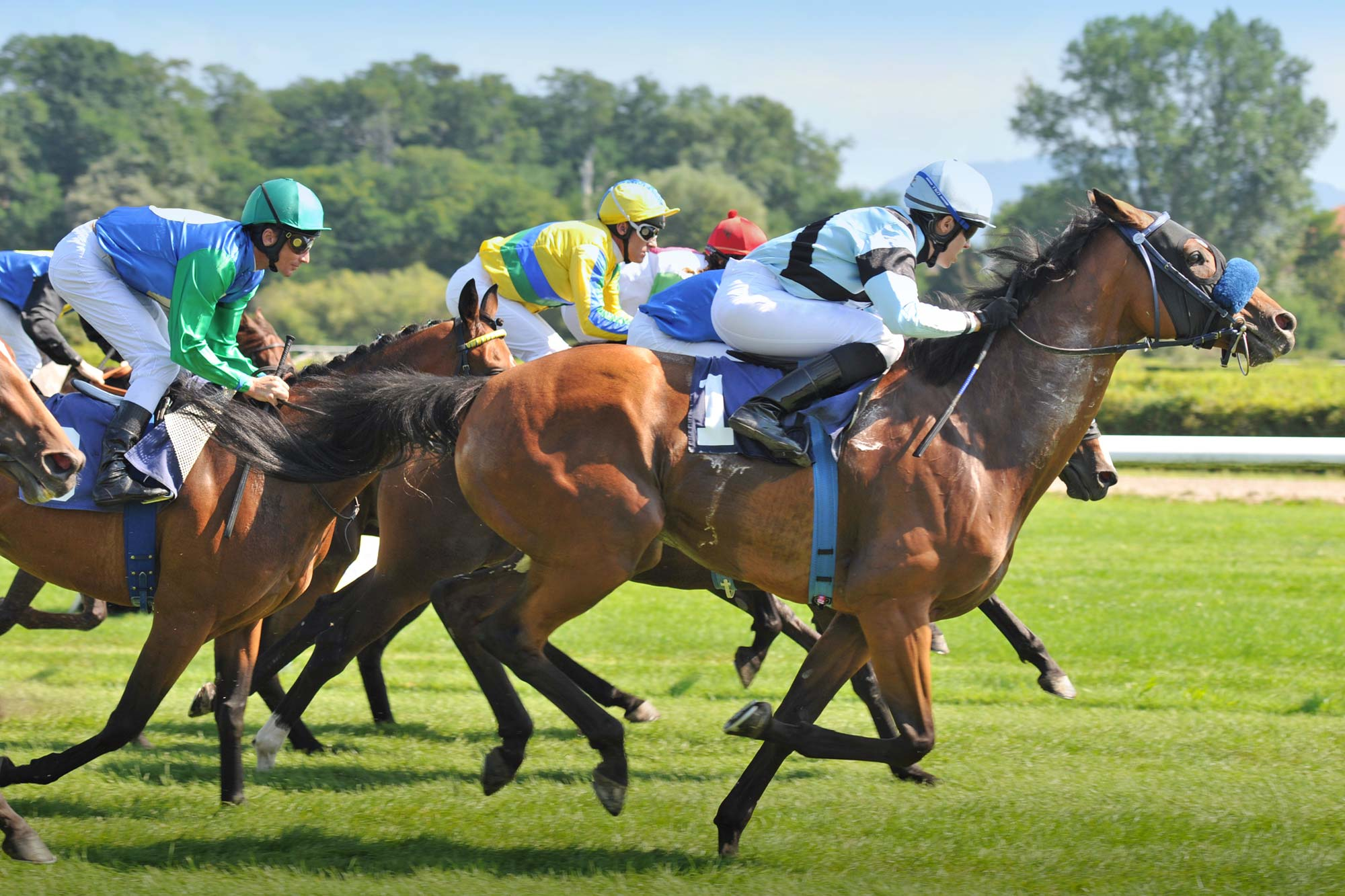 Pferderennen in Iffezheim