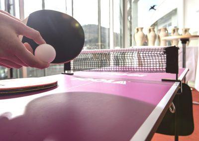 Tischtennisplatte im Innenbereich des Schwarzwald Panoramas