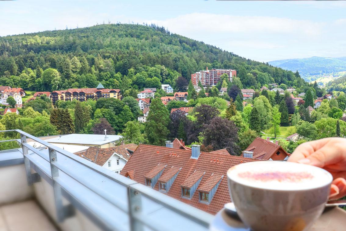 Exklusive Appartements im Hotel SCHWARZWALD PANORAMA in Bad Herrenalb