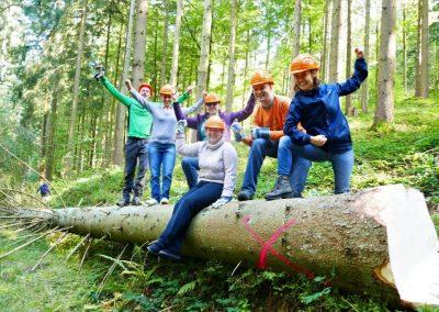 Gemeinsame Aktion im Team: Handholzen