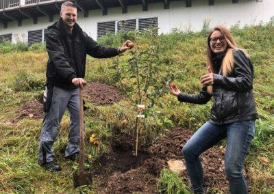 Baumpflanzung auf dem Gelände des Hotels SCHWARZWALD PANORAMA